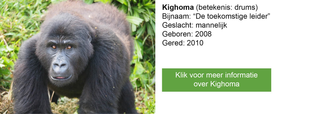 Kighoma-2