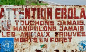 Eboladreiging terug voor mens en mensaap