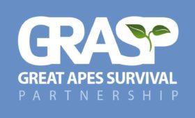 Gorilla Stichting Nederland nu ook partner van GRASP